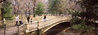 """Group of people walking on an arch bridge, Central Park, Manhattan, New York City, New York State, USA by Panoramic Images - 27"""" x 9"""""""