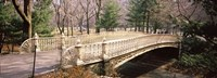 """Arch bridge in a park, Central Park, Manhattan, New York City, New York State, USA by Panoramic Images - 27"""" x 9"""""""