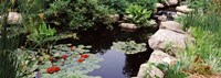 """Sunken Garden, Olbrich Botanical Gardens, Madison, Wisconsin by Panoramic Images - 27"""" x 9"""""""