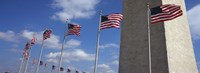 American flags in front of an obelisk, Washington Monument, Washington DC, USA Fine Art Print