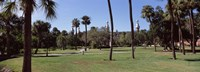 "Trees in a campus, University Of Tampa, Florida by Panoramic Images - 27"" x 9"" - $28.99"