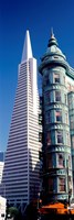 """Low angle view of towers, Columbus Tower, Transamerica Pyramid, San Francisco, California, USA by Panoramic Images - 9"""" x 27"""""""