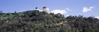 """Griffith Park Observatory, Los Angeles, California by Panoramic Images - 27"""" x 9"""", FulcrumGallery.com brand"""