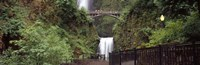 """Waterfall in a forest, Multnomah Falls, Hood River, Columbia River Gorge, Oregon by Panoramic Images - 27"""" x 9"""", FulcrumGallery.com brand"""