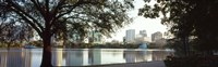 Lake Eola, Orlando, Florida (black & white) Fine Art Print