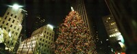 Christmas tree lit up at night, Rockefeller Center, Manhattan, New York State Fine Art Print