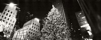 Christmas tree lit up at night, Rockefeller Center, Manhattan (black and white) Fine Art Print