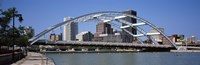 """Frederick Douglas-Susan B. Anthony Memorial Bridge across the Genesee River, Rochester, Monroe County, New York State, USA 2011 by Panoramic Images, 2011 - 27"""" x 9"""""""