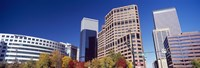 "Low angle view of skyscrapers, Downtown Denver, Denver, Colorado, USA 2011 by Panoramic Images, 2011 - 27"" x 9"", FulcrumGallery.com brand"
