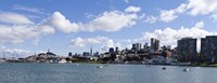 """Skyscrapers, Transamerica Pyramid, Ghirardelli Building, Coit Tower, Marina Park, San Francisco, California by Panoramic Images - 27"""" x 9"""""""