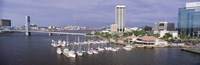 USA, Florida, Jacksonville, St. Johns River, High angle view of Marina Riverwalk Fine Art Print