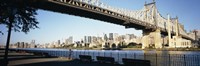 "Queensboro Bridge Over East River, Manhattan by Panoramic Images - 36"" x 12"""