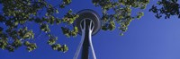 "Space Needle Maple Trees Seattle Center Seattle WA USA by Panoramic Images - 36"" x 12"""