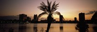 """Silhouette of buildings at the waterfront, Lake Eola, Summerlin Park, Orlando, Orange County, Florida, USA by Panoramic Images - 36"""" x 12"""" - $34.99"""