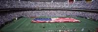 Veterans Stadium, Philadelphia, Pennsylvania Fine Art Print