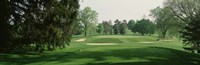 """Sand trap at a golf course, Baltimore Country Club, Maryland, USA by Panoramic Images - 36"""" x 12"""""""