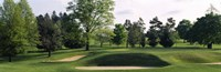 """Sand traps on a golf course, Baltimore Country Club, Baltimore, Maryland by Panoramic Images - 36"""" x 12"""""""
