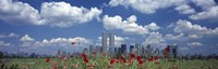 Red Flowers in a park with buildings in the background, Manhattan Fine Art Print