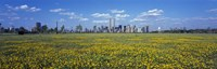 """Yellow Flowers in a park with Manhattan in the background, New York City by Panoramic Images - 36"""" x 12"""""""
