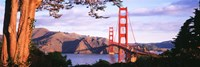 """Golden Gate Bridge with Mountains by Panoramic Images - 36"""" x 12"""""""