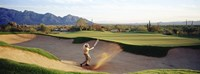 """Side profile of a man playing golf at a golf course, Tucson, Arizona, USA by Panoramic Images - 36"""" x 12"""""""