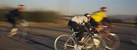 "Bicycle race, Tucson, Pima County, Arizona, USA by Panoramic Images - 36"" x 12"", FulcrumGallery.com brand"