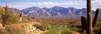Golf Course Tucson AZ Fine Art Print