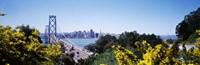 "Bay Bridge In San Francisco, San Francisco, California, USA by Panoramic Images - 36"" x 12"""