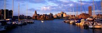 """Buffalo, New York Waterfront by Panoramic Images - 36"""" x 12"""""""