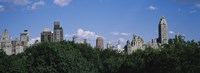 """Manhattan Buildings Rising above the Trees by Panoramic Images - 36"""" x 12"""", FulcrumGallery.com brand"""