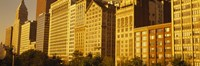 Michigan Avenue Architecture, Chicago, Illinois, USA by Panoramic Images - various sizes
