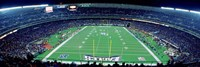 Philadelphia Eagles NFL Football Veterans Stadium Philadelphia PA Fine Art Print