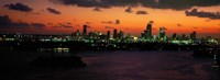 """Miami at night, Florida by Panoramic Images - 36"""" x 12"""", FulcrumGallery.com brand"""