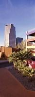 """La Placita Tucson AZ by Panoramic Images - 12"""" x 36"""""""