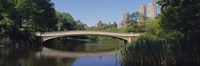"""Bridge across a lake, Central Park, New York City, New York State, USA by Panoramic Images - 36"""" x 12"""""""