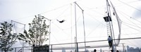 Trapeze School New York, Hudson River Park, NYC, New York City, New York State, USA Fine Art Print