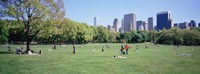 """Group Of People In A Park, Sheep Meadow, Central Park, NYC, New York City, New York State, USA by Panoramic Images - 36"""" x 12"""" - $34.99"""