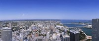 """Miami, Florida by Panoramic Images - 36"""" x 12"""", FulcrumGallery.com brand"""