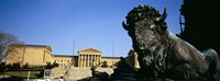 "Sculpture of a buffalo with a museum in the background, Philadelphia Museum Of Art, Philadelphia, Pennsylvania, USA by Panoramic Images - 36"" x 12"""