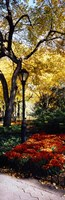 "Lamppost in a park, Central Park, Manhattan, New York City, New York, USA by Panoramic Images - 12"" x 36"""
