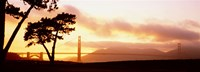 """Silhouette of trees at sunset, Golden Gate Bridge, San Francisco, California, USA by Panoramic Images - 36"""" x 13"""""""