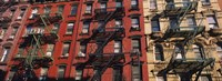 "Low angle view of fire escapes on buildings, Little Italy, Manhattan, New York City, New York State, USA by Panoramic Images - 36"" x 12"""
