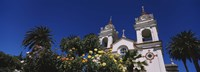 """Plants in front of a cathedral, Portuguese Cathedral, San Jose, Silicon Valley, Santa Clara County, California, USA by Panoramic Images - 36"""" x 12"""", FulcrumGallery.com brand"""