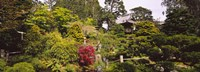 """Cottage in a park, Japanese Tea Garden, Golden Gate Park, San Francisco, California, USA by Panoramic Images - 36"""" x 12"""""""