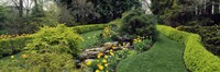 """Ladew Topiary Gardens, Monkton, Baltimore County, Maryland by Panoramic Images - 36"""" x 12"""""""