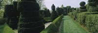 """Sculptures formed from trees and plants in a garden, Ladew Topiary Gardens, Monkton, Baltimore County, Maryland, USA by Panoramic Images - 36"""" x 12"""""""