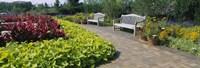 "Botanical garden, Circle Garden, Chicago Botanic Garden, Glencoe, Cook County Forest Preserves, Cook County, Illinois, USA by Panoramic Images - 36"" x 12"""