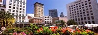 """Buildings in a city, Union Square, San Francisco, California, USA by Panoramic Images - 36"""" x 12"""""""