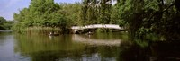 """Bridge across a lake, Central Park, Manhattan, New York City, New York State, USA by Panoramic Images - 36"""" x 12"""""""