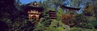 "Pagodas in a park, Japanese Tea Garden, Golden Gate Park, Asian Art Museum, San Francisco, California, USA by Panoramic Images - 36"" x 12"""